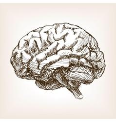 Human brain sketch style vector image