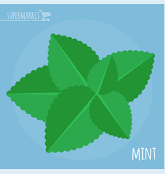 Fresh mint icon vector