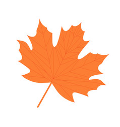 Maple leaf icon flat cartoon style isolated on vector