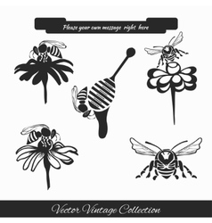 Set for honey sketches 1 vector