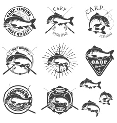 Set of carp fishing labels Design elements for vector image vector image