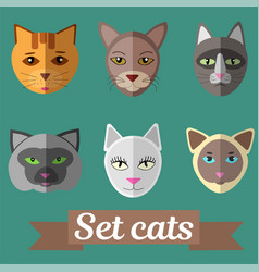 Set of cat faces vector