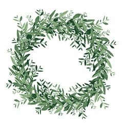 Watercolor olive wreath vector image