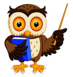 owl in the graduate carrying book vector image