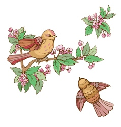 birds set 380 vector image