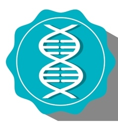 Dna structure icon vector