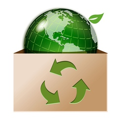 green globe in box vector image
