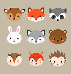 Cute woodland animals collection vector