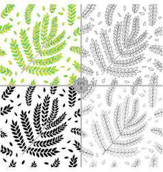 set of 4 seamless floral pattern hand vector image vector image