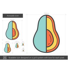 Avocado line icon vector