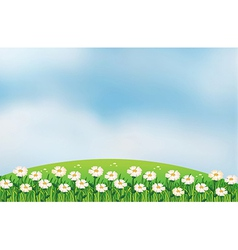 A flower plantation at the top of the hills vector