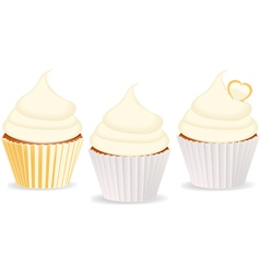 cupcakes vanilla vector image