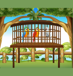 Macaw parrots in wooden cage vector