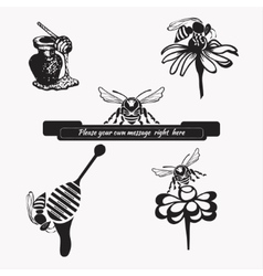 Set for honey sketches 3 vector image vector image