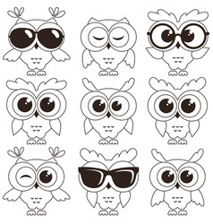 Set of cool owls isolated on white background vector