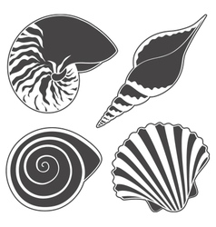 Set of graphic sea shells isolated objects vector