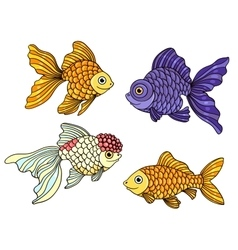 Set of the different goldfishes vector