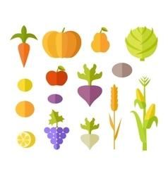 Set of fruits  vegetables vector