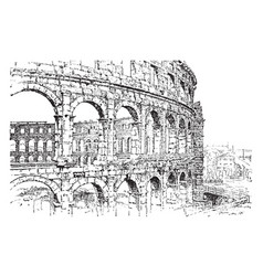 Amphitheater at pola dalmatia oval or circular in vector