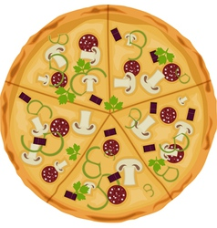 Pizza on a white background isolate vector