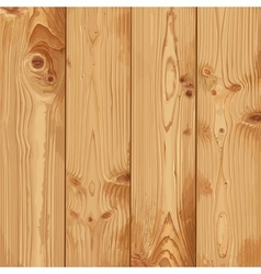 Realistic texture of pale wood vector image