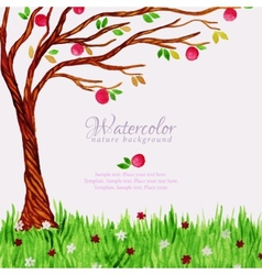 Watercolor tree with apples and grass vector image