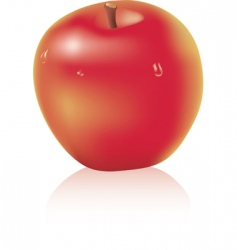 apple with water drops vector image