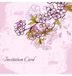 Blossom cherry or sakura invitation postcard vector image