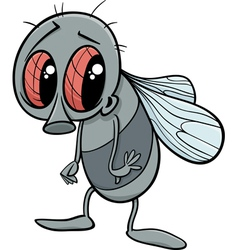 Cute fly cartoon vector
