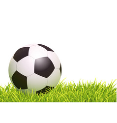 classic soccer ball vector image vector image