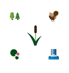 Flat icon ecology set of cattail lotus cascade vector