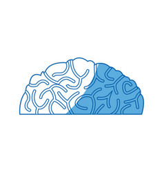 human brain idea creativity think vector image
