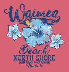 North shore waimea bay surfing paradise vector