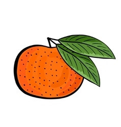 Hand drawn tangerine with green leaves vector