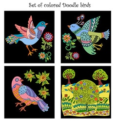 Set of 4 doodle colored birds vector
