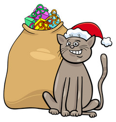 Cat with christmas presents cartoon vector