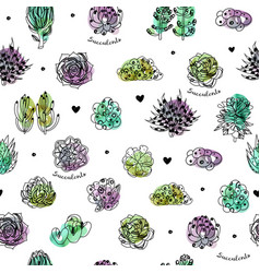 succulents seamless pattern vector image vector image
