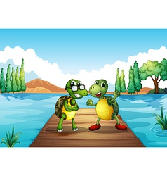 Two turtles standing at the diving board vector image