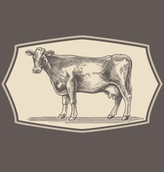 Hand drawn cow emblem vector image