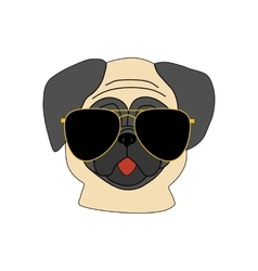 Pug dog in glasses vector