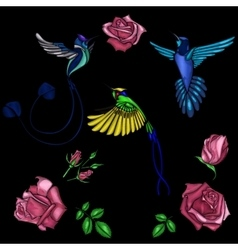 Rose and bird embroidery vector