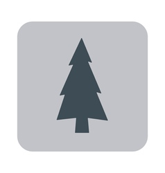 Evergreen conifer pine tree flat stylized icon vector