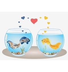 Fishes couple in love vector