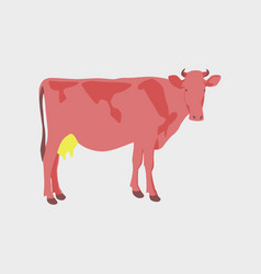in flat style cow vector image vector image