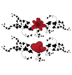 Lily hearts and ivy vector
