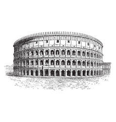 Colosseum only a short time as the hypogeum vector