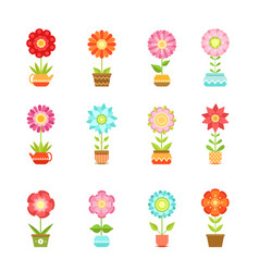 flowers in different pots floral set vector image vector image
