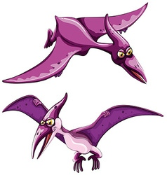 Purple pterosaur flying in the sky vector