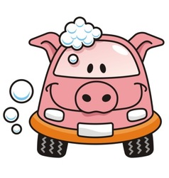 car wash pig vector image vector image