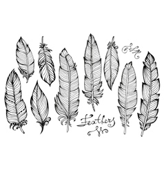 Hand drawn bird feathers closeup big set isolated vector